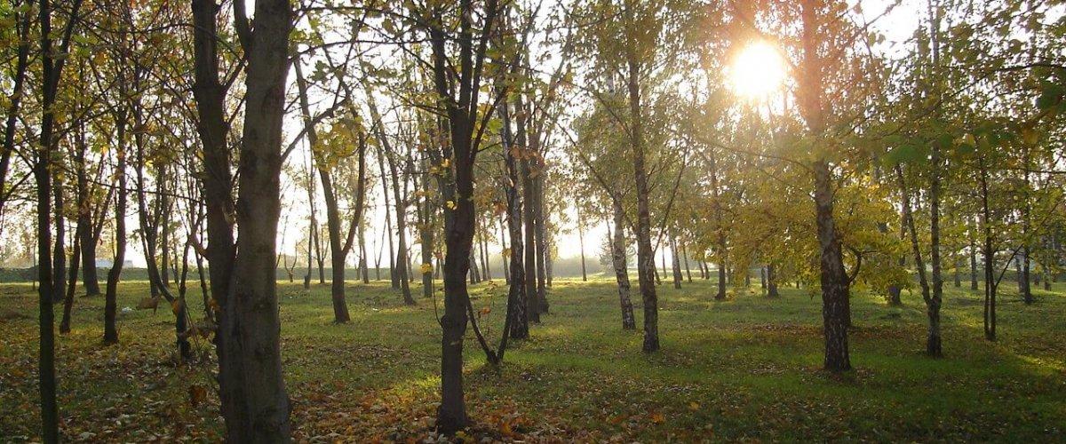 jesen2009 039